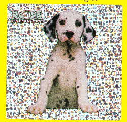 1996 Cheerios 101 Dalmations Puppy