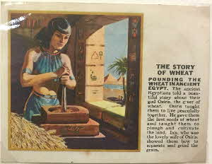 1930s Force Story of Wheat cards 3