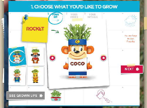 2015 Kelloggs Seed Heads web pages (3)