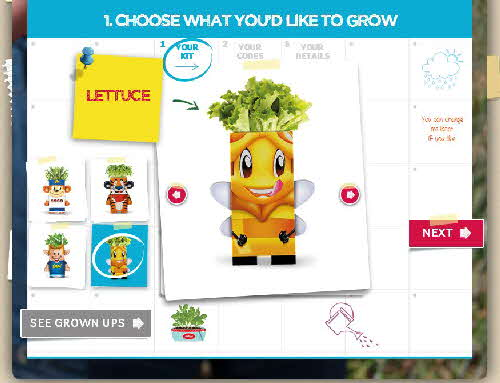 2015 Kelloggs Seed Heads web pages (6)