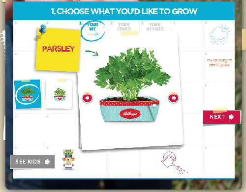 2015 Kelloggs Seed Heads web pages (7)