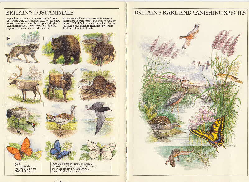 1983 Cornflakes Britains rare & vanishing species book