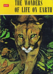 1964 Frosties The Wonders of Life on Earth1 small