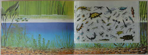 1970 Ricicles Instant Picture Book Pond Life inside