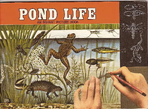 1970 Ricicles Instant Picture Book Pond Life