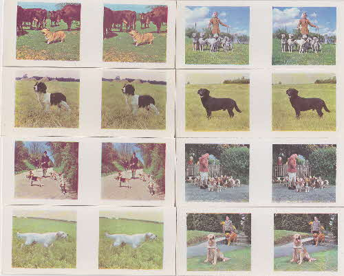 1960 Weetabix Working Dogs 3D Cards 1 front