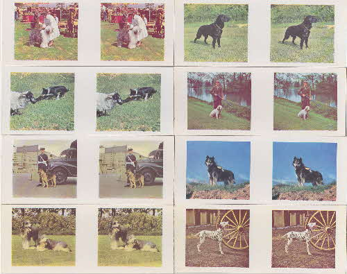 1960 Weetabix Working Dogs 3D Cards 2 front